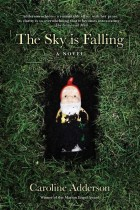 The Sky Is Falling cover